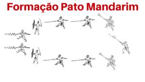 Formação pato mandarim