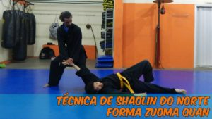 Shaolin do Norte Vs. Hapkido